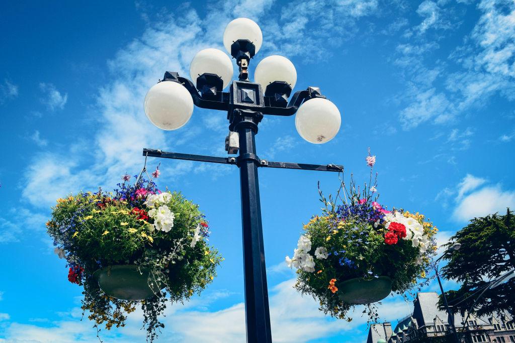 Flower baskets on lampposts