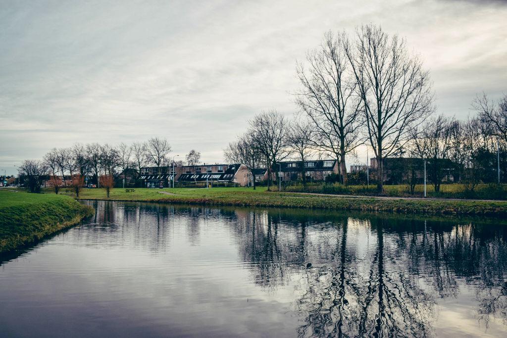winter netherlands scene